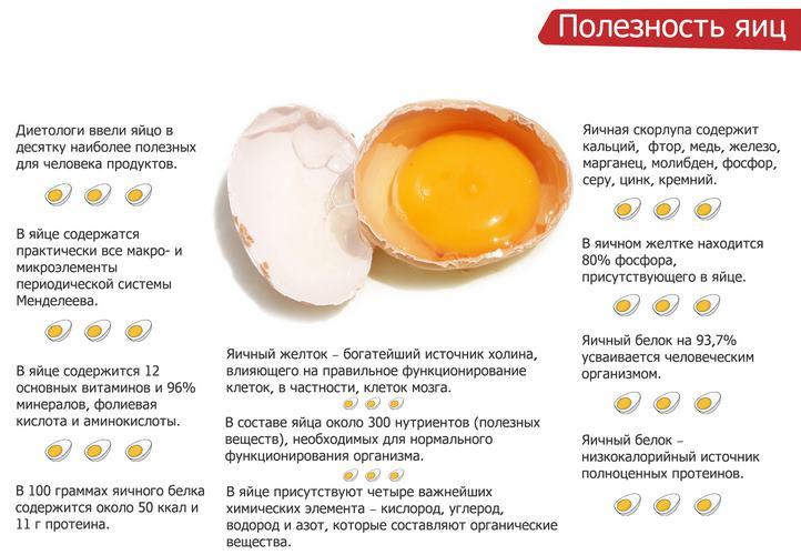 Сколько В День Можно Яиц При Диете. Как яйца влияют на похудание и сколько яйц можно есть в день?