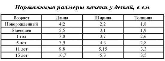 Таблица размеров печени у детей